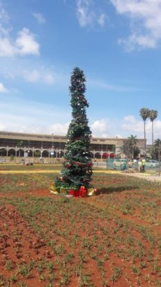 jkia christmas tree